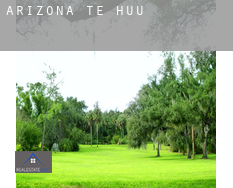 Arizona  te huur